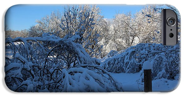 Wintertime iPhone Cases - Winter Day  iPhone Case by Cheryl Aguiar