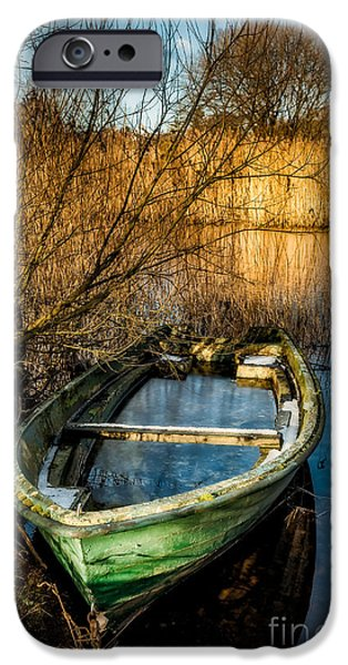 Bush Digital iPhone Cases - Winter Decay iPhone Case by Adrian Evans