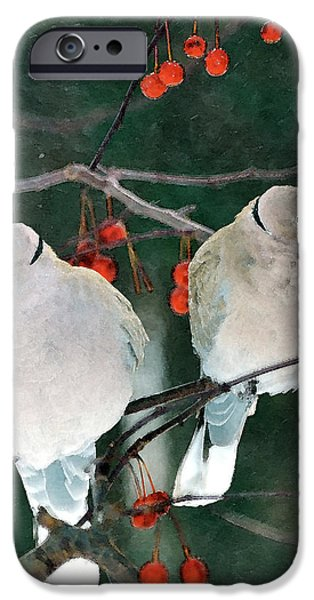 Dove iPhone Cases - Winter Doves iPhone Case by Betty LaRue