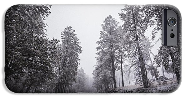 Winter Storm iPhone Cases - Winter Driven iPhone Case by Anthony Citro