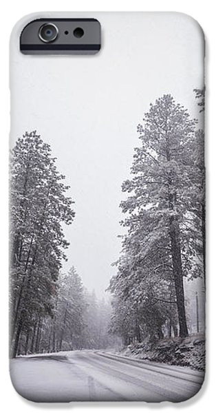 Winter Driven iPhone Case by Anthony Citro