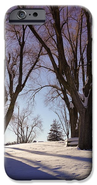 Winter iPhone Cases - Winter evening iPhone Case by Gloria Pasko