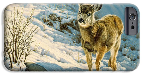 Fawn iPhone Cases - Winter Fawn - Mule Deer iPhone Case by Paul Krapf