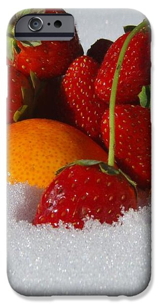 Winter Feast iPhone Case by Kristine Nora