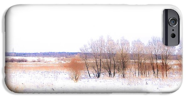 Interior Scene iPhone Cases - Winter Fields. In Color iPhone Case by Jenny Rainbow