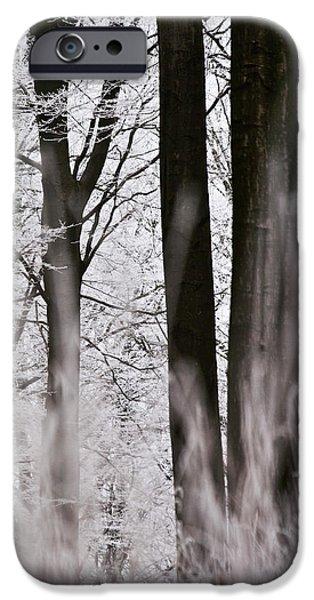 Winter Forest 1 iPhone Case by Heiko Koehrer-Wagner
