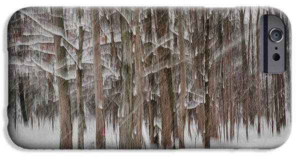 Winter Storm iPhone Cases - Winter forest abstract II iPhone Case by Elena Elisseeva
