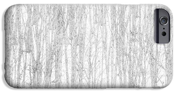 Snow Scene iPhone Cases - Winter forest iPhone Case by Attila Simon