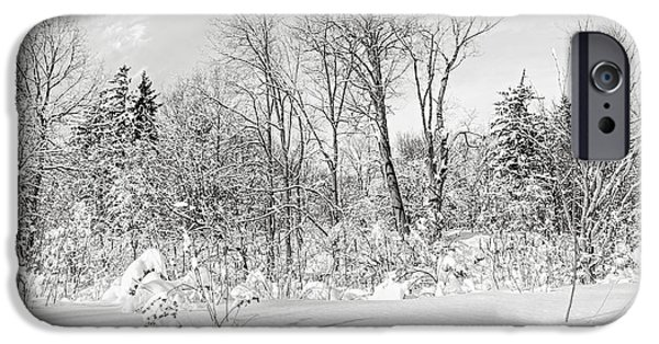 Park Scene iPhone Cases - Winter forest landscape iPhone Case by Elena Elisseeva