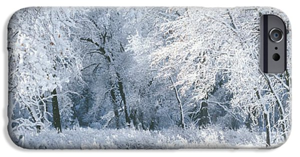 Snowy Day iPhone Cases - Winter, Forest, Yosemite National Park iPhone Case by Panoramic Images