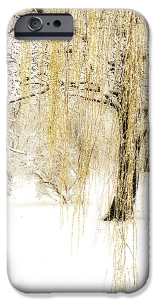 Snow Scene iPhone Cases - Winter Gold iPhone Case by Julie Palencia