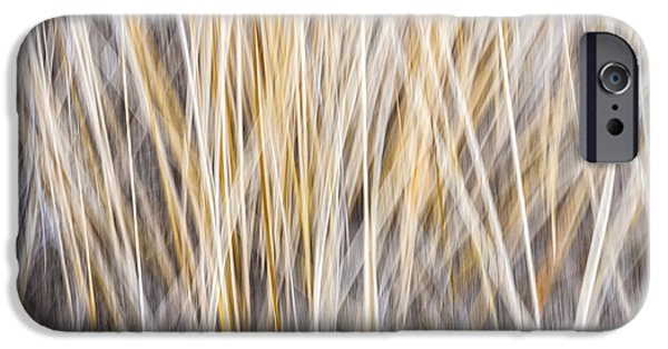Fall Grass iPhone Cases - Winter grass abstract iPhone Case by Elena Elisseeva