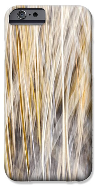 Winter grass abstract iPhone Case by Elena Elisseeva