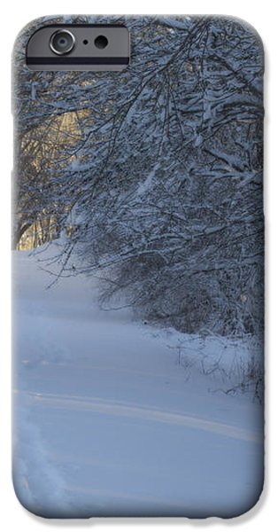 Winter Hike iPhone Case by Andrew Pacheco