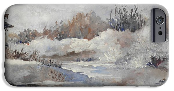 Winter Scene iPhone Cases - Winter Impressions iPhone Case by Suzanne Schaefer