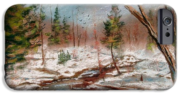 Etc. Pastels iPhone Cases - Winter in Canane iPhone Case by Bruce Schrader