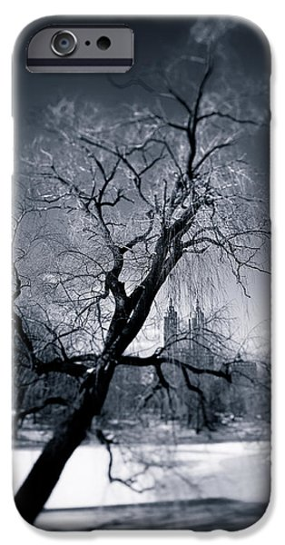 Frozen Lake iPhone Cases - Winter in Central Park iPhone Case by Dave Bowman