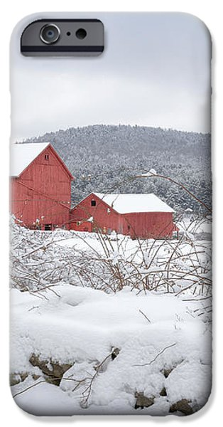 Winter in Connecticut iPhone Case by Bill  Wakeley