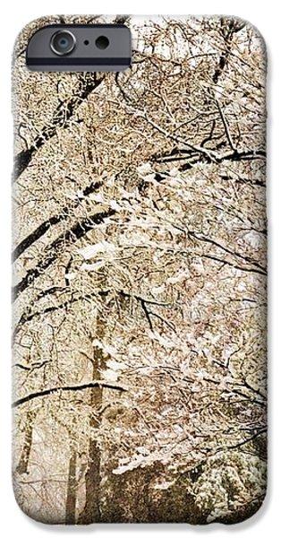 Winter In St. Louis iPhone Case by Marty Koch