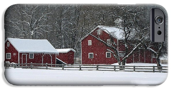 Winter Storm iPhone Cases - Winter in the Park iPhone Case by Ann Bridges