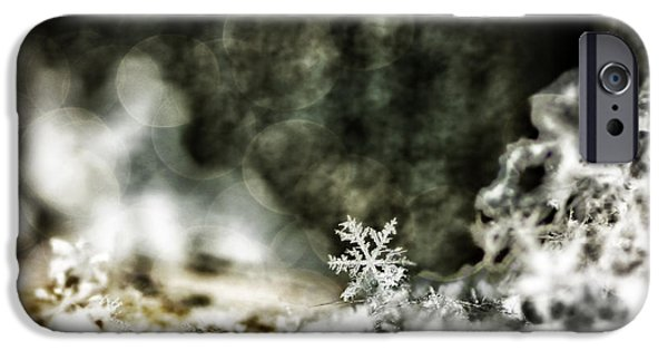 Wintertime iPhone Cases - Winter Lace iPhone Case by Darren Fisher