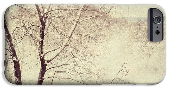 Winter Scene iPhone Cases - Winter Lace iPhone Case by Jenny Rainbow