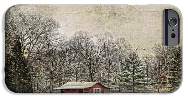 Snowy Scene iPhone Cases - Winter Lake iPhone Case by Darren Fisher