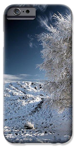 Winter Landscape iPhone Case by Grant Glendinning