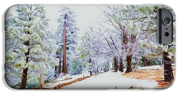 Snow Scene iPhone Cases - Winter landscape iPhone Case by Lanjee Chee