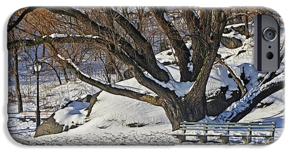 Trees In Snow iPhone Cases - Winter Landscape iPhone Case by Nishanth Gopinathan