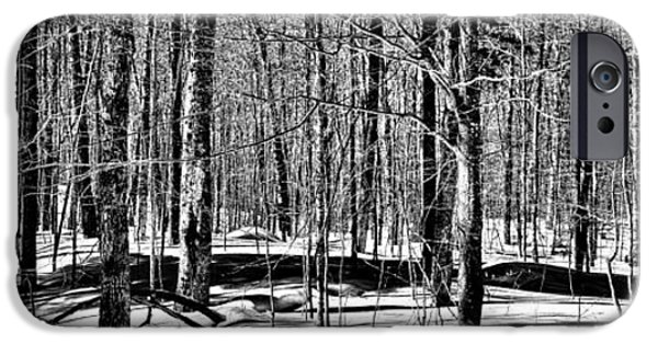 Winter Scene iPhone Cases - Winter Landscape on Rondaxe Road iPhone Case by David Patterson