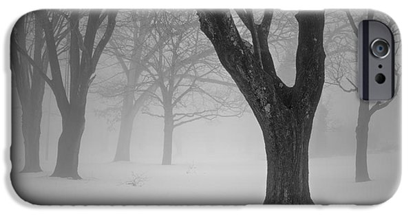 Dave Digital Art iPhone Cases - Winter Landscape V iPhone Case by David Gordon