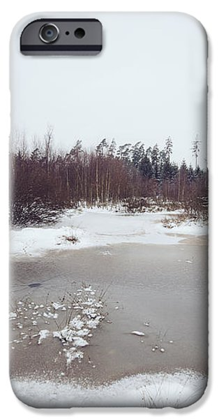 Winter landscape with trees and frozen pond iPhone Case by Matthias Hauser
