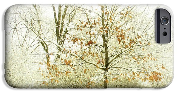 Snow Scene iPhone Cases - Winter Leaves iPhone Case by Julie Palencia