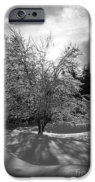 New England Snow Scene iPhone Cases - Winter Light iPhone Case by Barbara Bardzik
