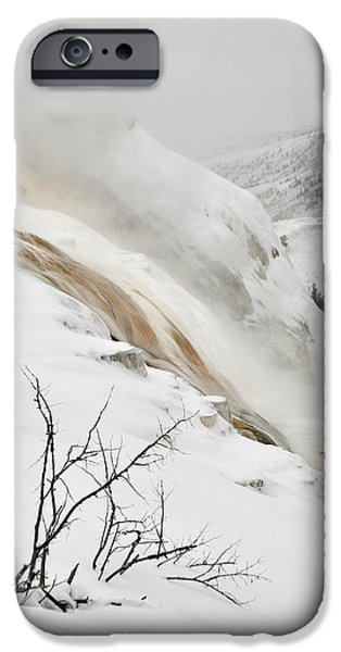 Mammoth Terrace iPhone Cases - Winter Limbs iPhone Case by Bruce Gourley