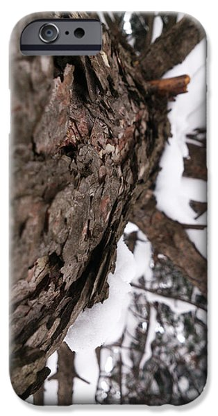 Winter iPhone Case by Lucy D