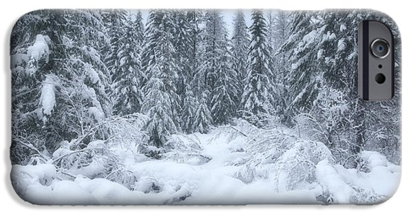 Winter Scene iPhone Cases - Winter Magic iPhone Case by Darren  White