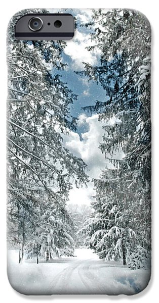 Snowy Brook iPhone Cases - Winter Me iPhone Case by Diana Angstadt