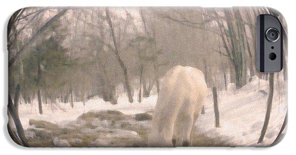 Paso Fino Stallion iPhone Cases - Winter Moments- With My Paso Fino Stallion iPhone Case by Patricia Keller