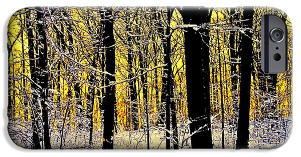 Winter Mornings iPhone Cases - Winter Mood Lighting iPhone Case by Frozen in Time Fine Art Photography