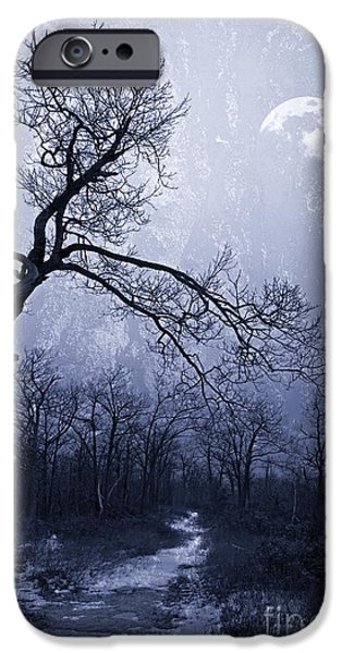 Gnarly iPhone Cases - Winter Moonlight Blues iPhone Case by John Stephens