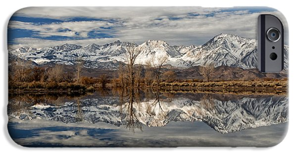 Winter Mornings iPhone Cases - Winter Morning at Farmers Pond iPhone Case by Cat Connor