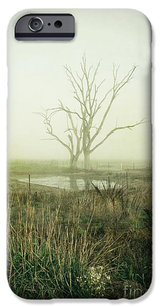 Winter Mornings iPhone Cases - Winter Morning Londrigan 1 iPhone Case by Linda Lees