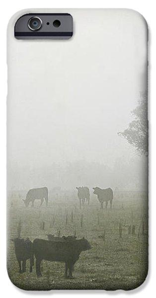 Winter Morning Londrigan 5 iPhone Case by Linda Lees