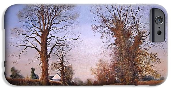Milton Keynes iPhone Cases - Winter morning on Calverton Lane iPhone Case by Barry BLAKE