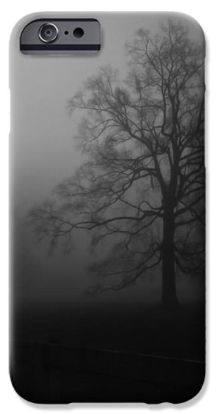 Winter Oak in Fog iPhone Case by Deborah Smith