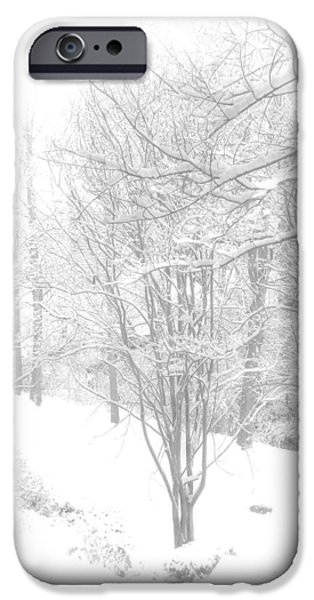 Winter of '14 iPhone Case by Larry Bishop