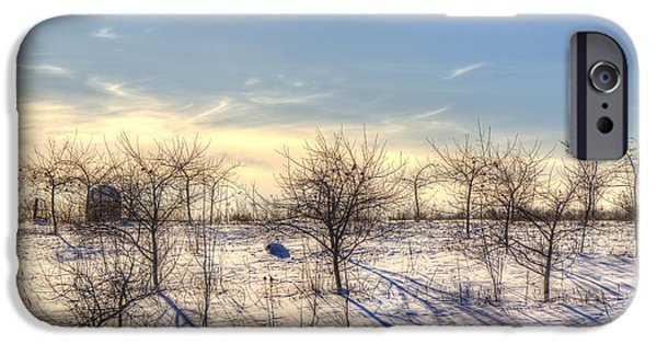 Winter Scene iPhone Cases - Winter Orchard - Vermont Farm iPhone Case by Joann Vitali