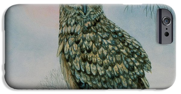 Owl iPhone Cases - Winter Owl iPhone Case by Ditz